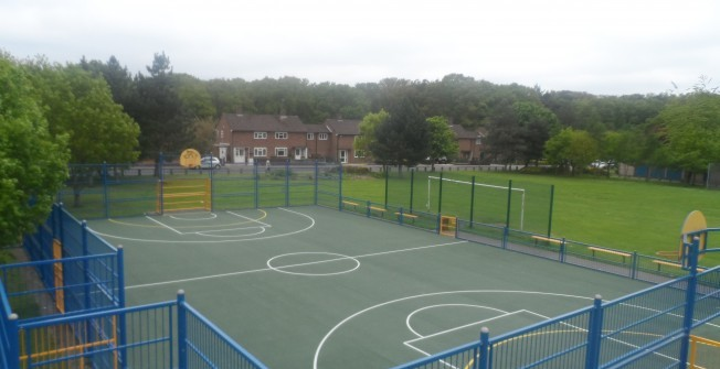 MUGA Facility Maintenance in Dell